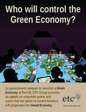 Who Will Control the Green Economy? (Cover